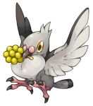 berry commentary_request flying full_body looking_at_viewer mouth_hold no_humans pearl7 pidove pokemon pokemon_(creature) simple_background solo spread_wings white_background