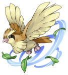 commentary_request flying full_body leaf looking_at_viewer no_humans pearl7 pidgey pokemon pokemon_(creature) simple_background solo spread_wings white_background