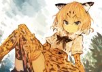 1girl absurdres animal_print bangs blonde_hair bow bush elbow_gloves eyebrows_visible_through_hair fur_trim gloves hair_between_eyes hand_on_own_leg high-waist_skirt highres jaguar_(kemono_friends) jaguar_ears jaguar_print kaamin_(mariarose753) kemono_friends knees_together_feet_apart looking_at_viewer multicolored_hair ribbon shirt sitting skirt smile solo thigh-highs white_hair white_shirt yellow_eyes