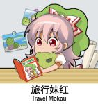 1girl book bow chibi chinese commentary_request english eyebrows_visible_through_hair frog fujiwara_no_mokou green_hat hair_bow hat holding holding_book indoors lowres photo_(object) puffy_short_sleeves puffy_sleeves reading red_eyes shangguan_feiying shirt short_sleeves solo tabikaeru touhou white_bow white_hair white_shirt