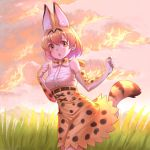 1girl 2804281484 :o animal_ears bare_shoulders belt bow bowtie clouds commentary elbow_gloves evening extra_ears eyebrows_visible_through_hair eyes_visible_through_hair gloves grass high-waist_skirt highres kemono_friends looking_at_viewer orange_eyes outdoors print_gloves print_neckwear print_skirt serval_(kemono_friends) serval_ears serval_print serval_tail shirt skirt sleeveless sleeveless_shirt solo tail white_shirt