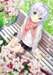 1girl aran_sweater bangs bench black_skirt blue_eyes blurry blurry_foreground blush cherry_blossoms chinomaron closed_mouth commentary_request day depth_of_field dutch_angle eyebrows_visible_through_hair gochuumon_wa_usagi_desu_ka? hair_between_eyes hair_ornament head_tilt highres kafuu_chino long_hair long_sleeves looking_at_viewer on_bench outdoors park_bench pleated_skirt red_scarf scarf silver_hair sitting skirt smile solo spring_(season) sweater twitter_username very_long_hair white_sweater x_hair_ornament
