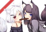 2girls absurdres animal_ears bangs bare_shoulders black_hair blue_eyes blush chocolate chocolate_bar eyebrows_visible_through_hair fang food_in_mouth fox_ears fox_tail hair_ornament hairclip heart highres hood hood_down hoodie long_hair looking_at_viewer mayogii mouth_hold multiple_girls off_shoulder original red_eyes shared_food short_hair signature smile tail upper_body valentine white_background white_hair