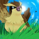 bird blue_sky brown_eyes clouds commentary creature dragonfly grass insect looking_away looking_back looking_up lowres no_humans pidgey pokemon pokemon_(creature) pokemon_(game) pokemon_rgby rock-bomber sky solo sun