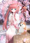 1girl absurdres bangs bench blue_eyes cherry_blossoms day eyebrows_visible_through_hair floral_print flower hair_flower hair_ornament happy_new_year highres japanese_clothes kimono lazy_guang_guang long_hair looking_at_viewer new_year obi oriental_umbrella petals pink_hair sash shiba_inu sitting taihou_(zhan_jian_shao_nyu) twintails umbrella very_long_hair wide_sleeves zhan_jian_shao_nyu
