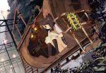 bandage book bowtie brown_eyes brown_hair dutch_angle kacchuu miniskirt nature original panchira_sit panties pantyshot pantyshot_sitting school_uniform short_hair sitting skirt socks sweater underwear