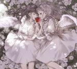 2girls angel angel_wings apple closed_eyes dress eating feathered_wings flower food fruit grey_eyes grey_hair hand_holding highres interlocked_fingers kakmxxxny06 long_hair lying multiple_girls original rose silver_hair white_dress white_flower white_rose wings yuri
