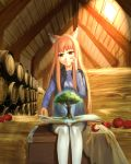 1girl absurdres animal_ears apple artist_request barrel book brown_hair chest eyebrows_visible_through_hair food fruit hand_on_own_face highres holo long_hair red_eyes shirt sitting skirt solo spice_and_wolf thigh-highs tree vest white_legwear wolf_ears