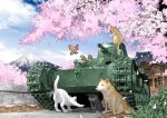 animal bird brick_wall cat caterpillar_tracks cherry_blossoms chi-ni clouds commentary day dog ground_vehicle inou_takashi military military_vehicle motor_vehicle mount_fuji no_humans official_art sky sparrow tank tree wargaming_japan world_of_tanks
