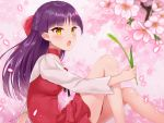1girl :o bangs bare_legs blunt_bangs blush bow brooch cherry_blossoms dress ears_visible_through_hair eyebrows_visible_through_hair fang feet_out_of_frame flat_chest from_side gegege_no_kitarou gem hair_bow half_updo holding jewelry knees_up long_hair long_sleeves looking_at_viewer looking_to_the_side naomi_(fantasia) nekomusume open_mouth pointy_ears red_bow red_dress shirt signature sitting solo sparkle straight_hair v-shaped_eyebrows wheat white_shirt yellow_eyes