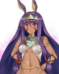 1girl animal_ears bangs bare_shoulders blush breasts closed_mouth commentary_request dark_skin egyptian egyptian_clothes eyebrows_visible_through_hair facial_mark fate/grand_order fate_(series) hair_between_eyes hairband hands_on_hips highres jackal_ears jewelry long_hair looking_at_viewer medium_breasts navel nitocris_(fate/grand_order) purple_hair setu_(shining12) sidelocks smile solo upper_body very_long_hair violet_eyes white_background