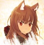 1girl angry animal_ears brown_hair commentary_request eyebrows_visible_through_hair holo long_hair looking_at_viewer red_eyes solo spice_and_wolf takhino wolf_ears