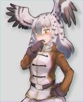 1girl belt bird_wings black_hair blush coat commentary_request cowboy_shot embarrassed eyebrows_visible_through_hair gloves grey_hair hand_on_hip head_wings highres kemono_friends long_hair long_sleeves martial_eagle_(kemono_friends) multicolored_hair nose_blush solo tatsuno_newo wings