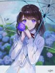 1girl bangs blurry blurry_background blush bra_through_clothes brown_hair closed_mouth collared_shirt depth_of_field eyebrows_visible_through_hair flower gloves hands_up holding holding_flower holding_umbrella hydrangea long_hair long_sleeves looking_at_viewer original purple_gloves rain sanbasou school_uniform see-through shirt signature smile solo transparent transparent_umbrella umbrella violet_eyes wet wet_clothes wet_shirt white_shirt