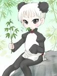 1girl bamboo black_eyes black_legwear bun_cover china_dress chinese_clothes double_bun dress eating eyeliner female food_in_mouth hakkatou holding juliet_sleeves leaf loli long_sleeves makeup original panda panda_costume pantyhose plant puffy_sleeves rock short_hair side_slit sitting sleeves_past_fingers smile solo white_hair wide_sleeves