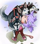 >:( >_< 1girl :< absurdres animal animal_ears bangs blue_eyes brown_pants cerberus child closed_mouth collar commentary_request dog dog_child_(doitsuken) dog_ears doitsuken eyebrows_visible_through_hair flying_sweatdrops frown hair_tie highres holding holding_animal husky lavender_hair leaning_back leash looking_at_another looking_at_viewer open_mouth original pants pink_footwear pink_shirt ponytail red_eyes shirt shoes slit_pupils spiked_collar spikes standing v-shaped_eyebrows