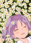 1girl bangs closed_eyes commentary daisy drooling eyebrows_visible_through_hair face flower flower_bed from_above hair_intakes hair_ornament hairpin idolmaster idolmaster_cinderella_girls kirarin369 koshimizu_sachiko lying on_back on_ground outdoors petals purple_hair short_hair sleeping solo