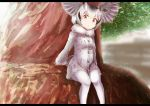 1girl absurdres blonde_hair commentary frame fur_collar gloves grey_coat grey_hair head_wings highres in_tree kemono_friends long_sleeves looking_at_viewer multicolored_hair northern_white-faced_owl_(kemono_friends) pantyhose short_hair sitting sitting_in_tree solo tail_feathers tamiku_(shisyamo609) tree white_hair white_legwear yellow_eyes yellow_gloves