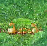 artist_name blush colored_pencil_(medium) leaf looking_at_another looking_away mouse no_humans original outdoors rain st.kuma traditional_media water_drop watercolor_(medium)