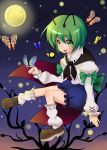androgynous antenna butterfly green_eyes green_hair moon night shie short_hair touhou wriggle_nightbug
