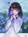 1girl bangs blurry blurry_background blush bra_through_clothes breasts brown_hair closed_mouth collared_shirt depth_of_field eyebrows_visible_through_hair flower gloves hands_up holding holding_flower holding_umbrella hydrangea long_hair long_sleeves looking_at_viewer medium_breasts original purple_gloves rain revision sanbasou school_uniform see-through shirt signature smile solo transparent transparent_umbrella umbrella violet_eyes wet wet_clothes wet_shirt white_shirt