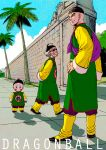 3boys arms_behind_back bag black_eyes black_footwear blush_stickers chaozu chinese_clothes clothes_writing clouds cloudy_sky copyright_name day dragon_ball dragon_ball_(classic) evil_smile facial_hair fingernails frown full_body grass hand_on_hip hat height_difference long_sleeves looking_at_viewer looking_back male_focus multiple_boys outdoors palm_tree serious shaded_face shadow short_hair sky smile standing sunglasses tenshinhan tree tsuru_sennin walking wall white_hair
