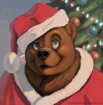 animal bear blue_eyes christmas christmas_tree clothed_animal commentary commission deviantart_username english_commentary hat looking_up no_humans original santa_hat solo twarda8
