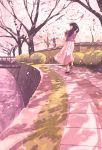 1girl bag black_hair bridge brown_footwear cherry_blossoms facing_away from_side gemi highres long_hair long_sleeves original outdoors pink_shirt pleated_skirt shirt shoes shoulder_bag skirt socks solo standing tree white_legwear white_skirt