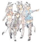 4girls animal_ears animal_print belt black_hair boots cargo_shorts chapman's_zebra_(kemono_friends) collared_shirt commentary crop_top eyebrows_visible_through_hair grevy's_zebra_(kemono_friends) kemono_friends long_hair long_sleeves midriff mountain_zebra_(kemono_friends) multicolored_hair multiple_girls necktie pantyhose plains_zebra_(kemono_friends) pleated_skirt pointing scarf shirt short_shorts short_sleeves shorts shuushuusha skirt striped striped_legwear thigh-highs white_hair zebra_ears zebra_print zebra_tail