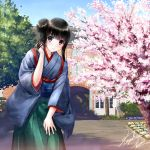 1girl bangs black_eyes black_hair blue_hakama blue_sky blunt_bangs blush day green_hakama hair_bun hakama hand_on_leg japanese_clothes kazuharu_kina leaning_forward looking_at_viewer obi original outdoors sash shiny shiny_hair short_hair_with_long_locks sidelocks signature sky smile solo tree