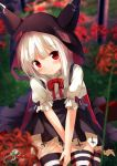 1girl azur_lane bangs black_cape black_skirt blurry blurry_background blurry_foreground blush cape chinomaron closed_mouth commentary_request day depth_of_field erebus_(azur_lane) eyebrows_visible_through_hair flower hair_between_eyes head_tilt highres hooded_cape horns long_hair outdoors pleated_skirt puffy_short_sleeves puffy_sleeves red_eyes red_flower shirt short_sleeves signature silver_hair sitting skirt smile solo striped striped_legwear thigh-highs torn_clothes twitter_username wariza white_shirt