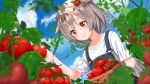 1girl ame. azur_lane bangs basket blue_sky blush closed_mouth clouds collarbone commentary_request day dutch_angle eyebrows_visible_through_hair hair_between_eyes hair_flaps hair_ornament hand_up montpelier_(azur_lane) outdoors overalls red_eyes shirt short_sleeves silver_hair sky smile solo tomato tomato_hair_ornament white_shirt