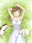 1girl arm_up blush breasts brown_hair cat day dress flower from_above grass green_eyes kawamoto_akari long_hair looking_at_viewer lying on_back outdoors sangatsu_no_lion small_breasts smile solo summer_worm white_cat white_dress