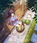 1girl :d animal black_hair blue_eyes blue_kimono breasts butterfly_net cat day food fruit grey_hat hairband hand_net hat holding holding_food japanese_clothes kimono long_sleeves looking_at_viewer medium_breasts mini_hat nagu obi open_mouth original outdoors pinwheel_hair_ornament popsicle round_teeth sash short_hair short_kimono sitting sleeves_past_wrists smile soaking_feet solo standing teeth upper_teeth veranda water watermelon white_hairband wide_sleeves