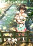 1girl animal bangs barefoot black_hair blush brown_eyes brown_hair cat collarbone dappled_sunlight day dress eyebrows_visible_through_hair fence floral_print forest highres holding holding_animal light_rays looking_at_viewer nature open_mouth original outdoors revision ripples short_hair sugi87 sunlight tree wading water white_dress wooden_fence