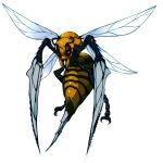 bee beedrill bug commentary_request creatures_(company) fukurou_(owl222) full_body game_freak gen_1_pokemon insect nintendo no_humans pokemon pokemon_(creature) realistic simple_background solo spikes white_background