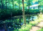 day forest house nature no_humans original outdoors reflection scenery stream toichi_(ik07) tree