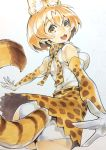 1girl :3 absurdres animal_ears ass black_belt blonde_hair blush_stickers bow bowtie commentary cowboy_shot elbow_gloves extra_ears eyebrows_visible_through_hair fang foreshortening from_behind gloves high-waist_skirt highres kemono_friends kuma_(jk0073) looking_at_viewer looking_back open_mouth panties pantyshot pantyshot_(standing) print_gloves print_neckwear print_skirt serval_(kemono_friends) serval_ears serval_print serval_tail shirt skirt sleeveless sleeveless_shirt smile solo standing striped_tail tail underwear white_panties yellow_eyes