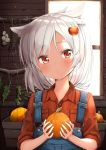 1girl ame. animal_ears azur_lane bangs blush closed_mouth collared_shirt commentary_request day eyebrows_visible_through_hair food food_request food_themed_hair_ornament garlic hair_between_eyes hair_ornament head_tilt highres holding holding_food indoors long_hair looking_at_viewer montpelier_(azur_lane) orange_skirt overalls plaid plaid_skirt pumpkin_hair_ornament red_eyes shirt silver_hair skirt solo sunlight upper_body window