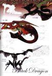 concept_art drag-on_dragoon dragon drakengard fujisaka_kimihiko official_art