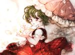 abstract_background dress earrings green_hair holding holding_umbrella jewelry kazami_yuuka majamari open_mouth outstretched_hand parasol petals red_dress red_eyes short_hair sketch touhou umbrella wind