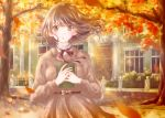 1girl autumn autumn_leaves blurry blush bokeh book book_hug brown_dress brown_eyes brown_hair commentary_request day depth_of_field dress eyebrows_visible_through_hair fingernails hair_blowing hands_together high_collar highres holding holding_book hoshiibara_mato house ironwork long_sleeves looking_at_viewer medium_hair neck_ribbon original outdoors parted_lips ribbon sash solo tree upper_body wind