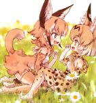 2girls animal_ear_fluff animal_ears bare_shoulders blonde_hair blue_eyes bow bowtie caracal_(kemono_friends) caracal_ears caracal_tail commentary_request elbow_gloves eyebrows_visible_through_hair fang gloves high-waist_skirt highres kemono_friends kneeling kolshica light_brown_hair multicolored_hair multiple_girls no_shoes open_mouth paw_pose serval_(kemono_friends) serval_ears serval_print serval_tail short_hair sitting skirt sleeveless tail thigh-highs white_hair yellow_eyes zettai_ryouiki