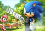 amy_rose apron barbecue cook food hedgehog meat no_humans plate rasein sausage smoke sonic sonic_the_hedgehog spatula table tablecloth tails_(sonic)