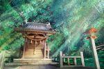 absurdres fantasy forest hankachi_(okayama012) highres huge_filesize light_beam nature no_humans original railing scenery shrine stone stone_walkway