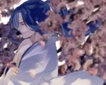 1boy assassin_(fate/stay_night) blue_hair blurry cherry_blossoms closed_eyes closed_mouth crossed_arms dekoyama depth_of_field fate/grand_order fate/stay_night fate_(series) floating_hair from_side hadanugi_dousa japanese_clothes light_particles long_hair neck off_shoulder petals ponytail profile single_bare_shoulder smirk smug upper_body