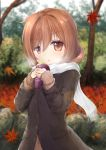 1girl autumn_leaves bangs blurry blurry_background brown_coat brown_hair brown_shirt chestnut_mouth coat commentary_request day depth_of_field eyebrows_visible_through_hair food fringe hair_between_eyes head_tilt highres holding holding_food leaf long_sleeves looking_at_viewer maple_leaf maru_shion original outdoors parted_lips red_eyes scarf shirt sleeves_past_wrists solo standing sweet_potato tree upper_body white_scarf