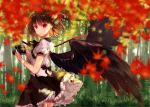1girl autumn_leaves bamboo bamboo_forest bangs black_bow black_hair black_neckwear black_ribbon black_skirt black_wings bow breasts camera commentary_request cowboy_shot feathered_wings forest hat holding holding_camera kisaragi_yuri light_particles looking_at_viewer medium_breasts nature neck_ribbon petticoat puffy_short_sleeves puffy_sleeves red_eyes ribbon shameimaru_aya shirt short_hair short_sleeves skirt solo standing tokin_hat touhou white_shirt wings
