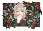 1girl bangs border eating eyebrows_visible_through_hair food fruit grey_hair hair_between_eyes holding holding_food holding_fruit horns kamura_gimi leaf looking_at_viewer medium_hair oni original plant pointy_ears pomegranate smile solo sweater tree upper_body white_border yellow_eyes