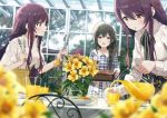 3girls 4girls ahoge basket belt black_ribbon blouse blurry blurry_background blurry_foreground blush braid breasts brown_eyes brown_hair chair character_request cup day dress eyebrows_visible_through_hair floral_print flower food fork gleam glint hair_over_shoulder high-waist_skirt holding holding_basket holding_fork holding_jug holding_knife idolmaster idolmaster_shiny_colors knife kuwayama_chiyuki long_hair looking_at_viewer multiple_girls neck_ribbon oosaki_amana oosaki_tenka open_mouth orange_juice plaid plaid_dress plate pouring purple_hair ribbon single_braid skirt smile sonsoso table tree vase white_blouse yellow_flower yellow_skirt